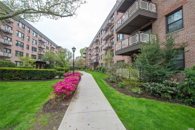 3 Birchwood Ct 2E, Mineola, NY 11501 (MLS #3128922) :: Signature Premier Properties