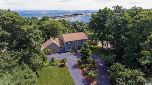 9 Stern Dr, Port Jefferson, NY 11777 (MLS #3041614) :: Keller Williams Points North