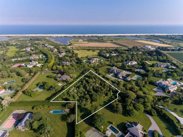12 Fordune Ct, Water Mill, NY 11976 (MLS #2946101) :: Netter Real Estate