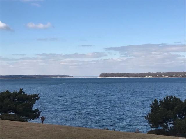 11 Malcolms Landing, Northport, NY 11768 (MLS #2995908) :: Netter Real Estate