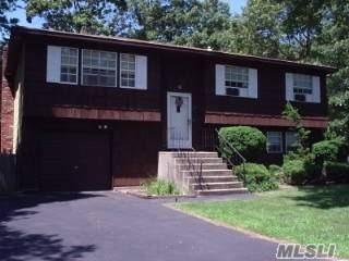 190 Hudson Ave, Lake Grove, NY 11755 (MLS #2956597) :: The Lenard Team
