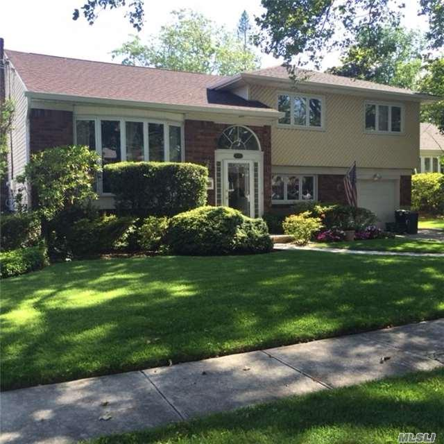 448 Chamberlin St, East Meadow, NY 11554 (MLS #2972773) :: The Lenard Team