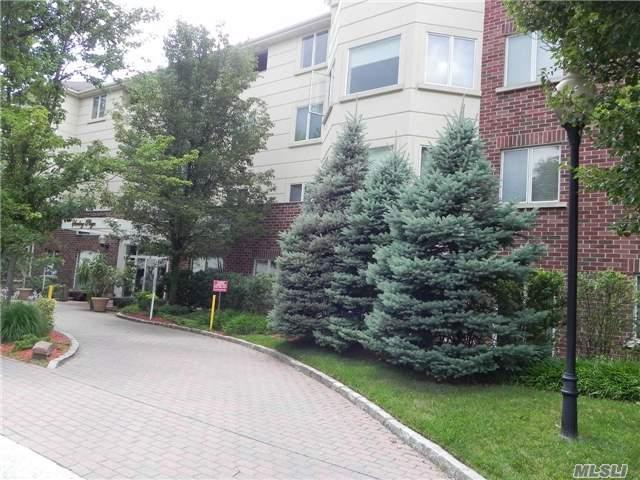 171 Great Neck Rd 3H, Great Neck, NY 11021 (MLS #2973662) :: Keller Williams Homes & Estates