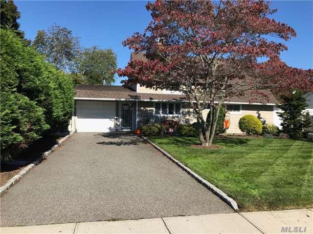 113 N Twin Ln, Wantagh, NY 11793 (MLS #2987109) :: The Lenard Team