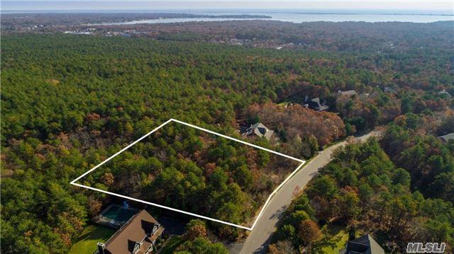 77 Corbett Dr, E. Quogue, NY 11942 (MLS #2989517) :: Netter Real Estate