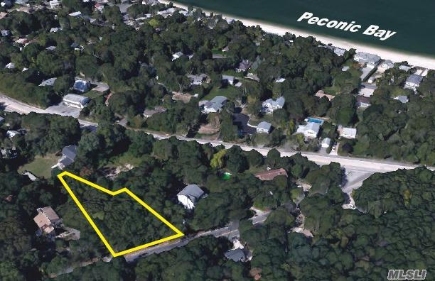 53 Peconic Rd, Hampton Bays, NY 11946 (MLS #2990782) :: Netter Real Estate