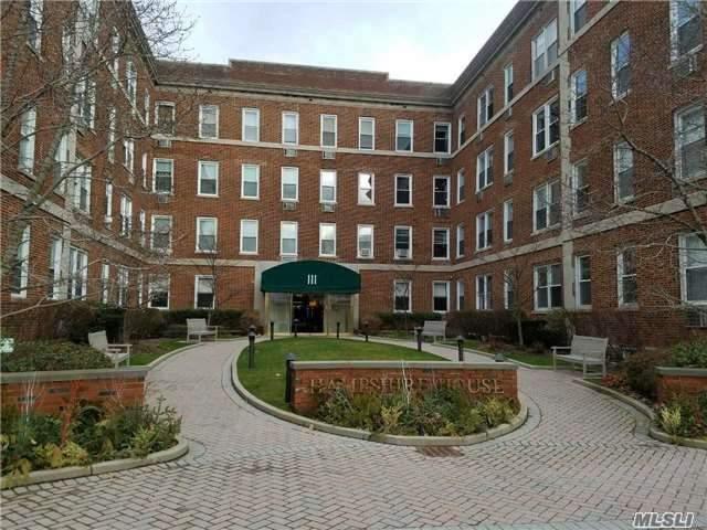 111 7th St #212, Garden City, NY 11530 (MLS #2990828) :: Netter Real Estate