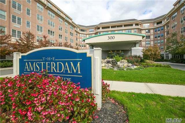 300 East Overlook #217, Port Washington, NY 11050 (MLS #2992537) :: Keller Williams Points North