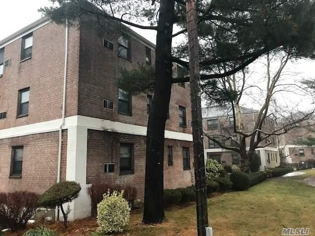 8 West Mill Dr 1F, Great Neck, NY 11021 (MLS #3008898) :: Netter Real Estate
