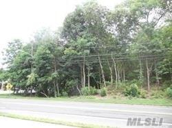 167 Terry Rd, Smithtown, NY 11787 (MLS #3015147) :: Netter Real Estate