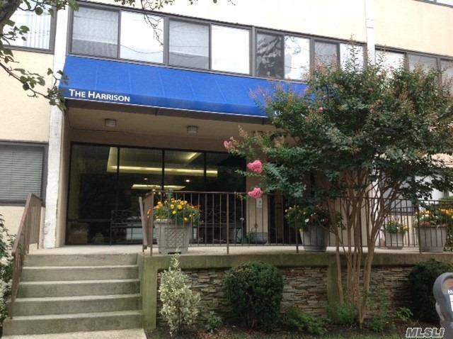 142 Main St 3H, Mineola, NY 11501 (MLS #3066984) :: The Lenard Team