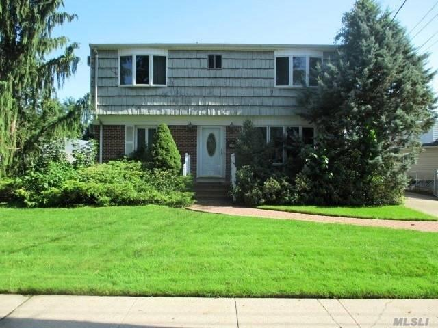 397 Chestnut Ave, East Meadow, NY 11554 (MLS #3067031) :: The Lenard Team