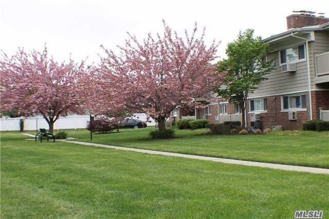 365 Route 111 B-1, Smithtown, NY 11787 (MLS #3077917) :: Netter Real Estate