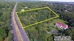 103 & 105 Route 106, Muttontown, NY 11791 (MLS #3083050) :: Netter Real Estate