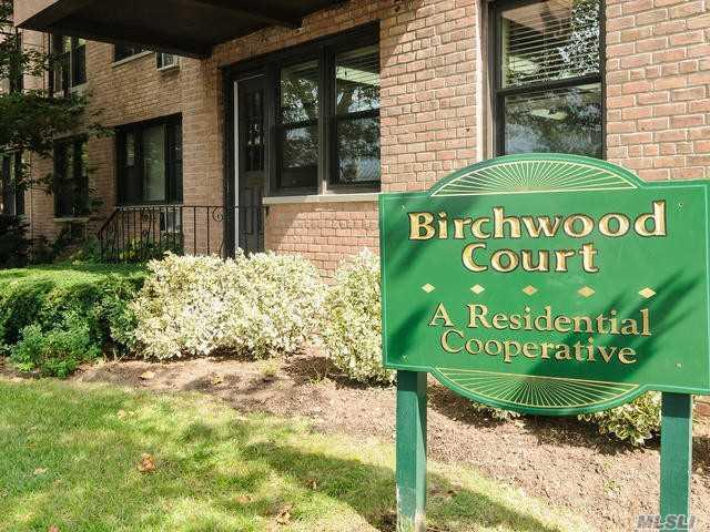 6 Birchwood Ct 3O, Mineola, NY 11501 (MLS #3085091) :: The Kalyan Team