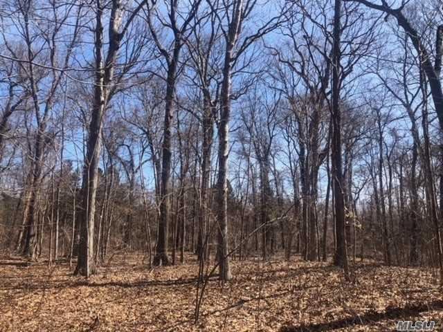 Old Mill Rd, Nissequogue, NY 11780 (MLS #3115309) :: Shares of New York