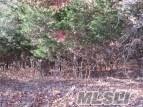 9 Remsen Ln, Remsenburg, NY 11960 (MLS #3131915) :: Netter Real Estate