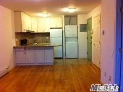 31-22 Union St 5A, Flushing, NY 11354 (MLS #3173895) :: Keller Williams Points North