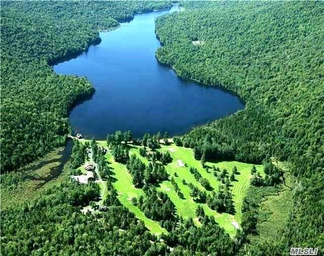 Heiden Rd Thompsonville Rd Rd, Out Of Area Town, NY 12779 (MLS #2902938) :: Netter Real Estate