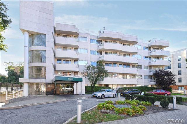 88 Cuttermill Rd #306, Great Neck, NY 11021 (MLS #2971989) :: Netter Real Estate