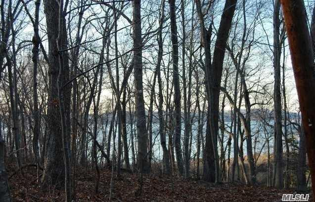 Lot #5 Woodlot Rd, Head Of Harbor, NY 11780 (MLS #3064794) :: Netter Real Estate