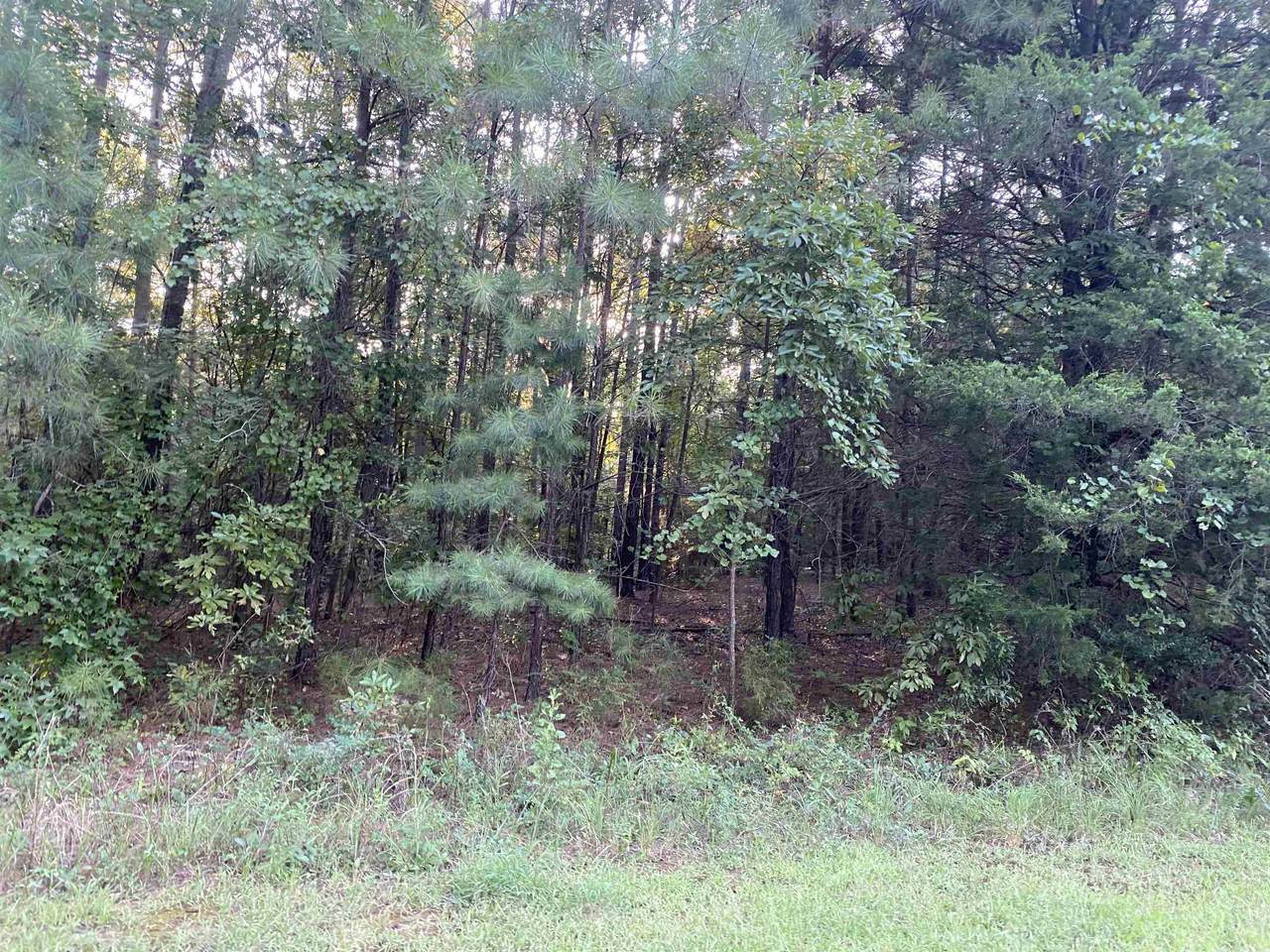 Lot 6 Holly Creek Dr. - Photo 1