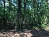 TBD Holly Lake Ranch - Photo 1