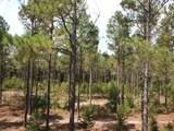 43.650 Acres Cr 2989 - Photo 2