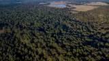 TBD Cr 435 D 308 Acres - Photo 4