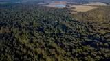 TBD Cr 435 D 308 Acres - Photo 5