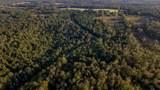TBD Cr 435 D 308 Acres - Photo 8