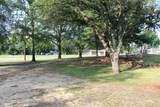 3103 Pine Tree - Photo 7