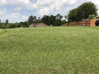 501 Creekside Dr., Marshall, TX 75672 (MLS #20172018) :: RE/MAX Professionals - The Burks Team