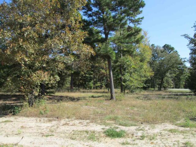 Lot 23 Willow Creek Ranch Rd, Gladewater, TX 77377 (MLS #20165529) :: RE/MAX Professionals - The Burks Team