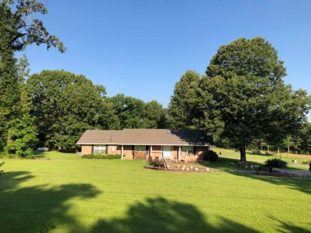 4173 N Us Hwy 59, Beckville, TX 75631 (MLS #20183128) :: RE/MAX Professionals - The Burks Team