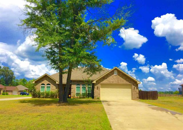 4139 S Sego Lily Rd., New Diana, TX 75640 (MLS #20183819) :: RE/MAX Professionals - The Burks Team