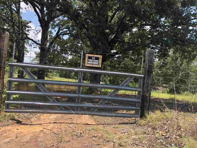 705 Violet Hill Rd, Avinger, TX 75630 (MLS #20183873) :: RE/MAX Professionals - The Burks Team