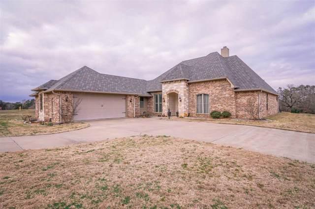 240 Timberlake Ranch Rd., Hallsville, TX 75650 (MLS #20200540) :: RE/MAX Professionals - The Burks Team