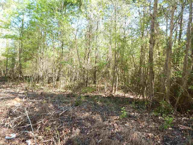 TBD #4, 5 ACRES CHEROKEE TRACE, Gilmer, TX 75644 (MLS #20201509) :: RE/MAX Professionals - The Burks Team