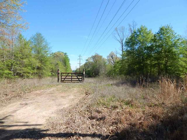 TBD 55 ACRES CHEROKEE TRACE, Gilmer, TX 75644 (MLS #20201510) :: RE/MAX Professionals - The Burks Team