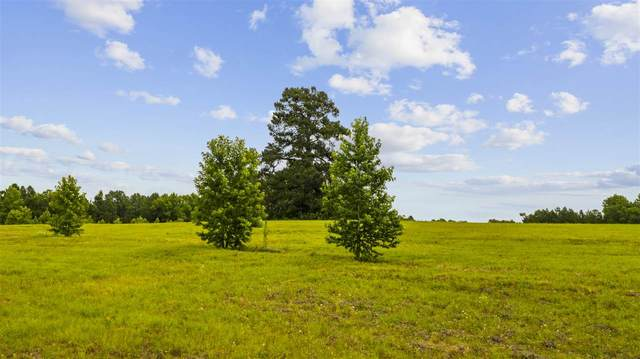 20000 State Hwy 110 N, Troup, TX 75789 (MLS #20203329) :: RE/MAX Professionals - The Burks Team