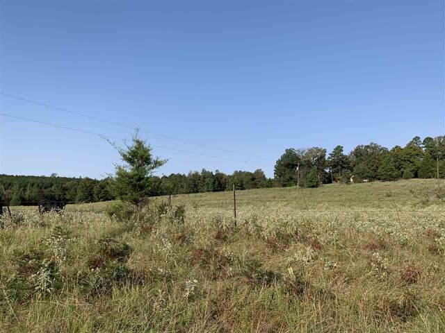 TBD County Road 1775, Linden, TX 75563 (MLS #20205089) :: RE/MAX Professionals - The Burks Team