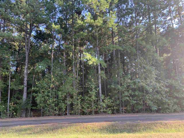 unknown County Road 1520, Avinger, TX 75630 (MLS #20205247) :: Better Homes and Gardens Real Estate Infinity