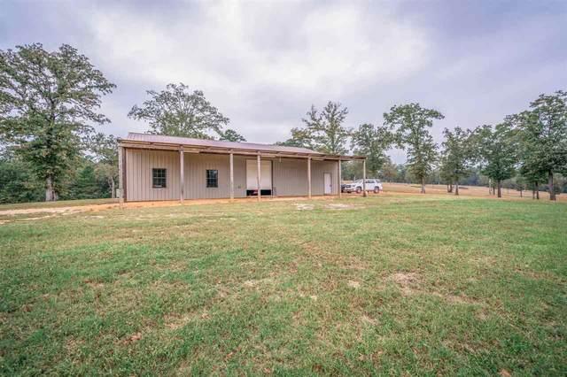 1311 Oscar Ragon Rd, Harleton, TX 75651 (MLS #20205338) :: RE/MAX Professionals - The Burks Team