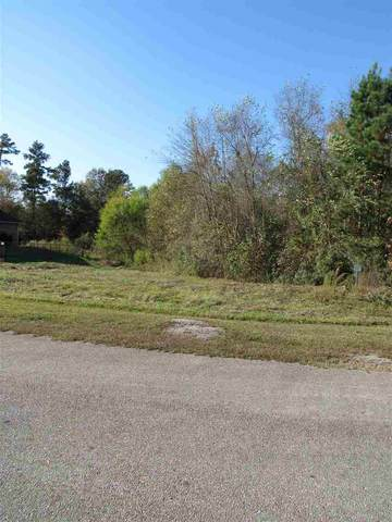 Block E Lot 13 Birdie Ln, Gladewater, TX 75647 (MLS #20205781) :: Better Homes and Gardens Real Estate Infinity