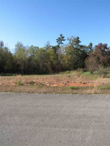Block E Lot 15 Birdie Ln, Gladewater, TX 75647 (MLS #20205782) :: Better Homes and Gardens Real Estate Infinity