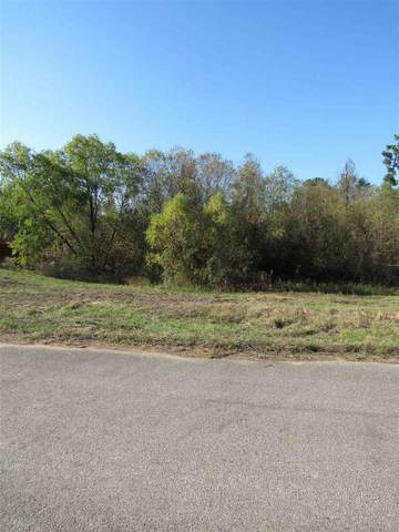 Block E Lot 16 Birdie Ln, Gladewater, TX 75647 (MLS #20205783) :: Better Homes and Gardens Real Estate Infinity