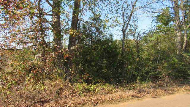 Cr 3406, Jefferson, TX 75657 (MLS #20205835) :: Better Homes and Gardens Real Estate Infinity