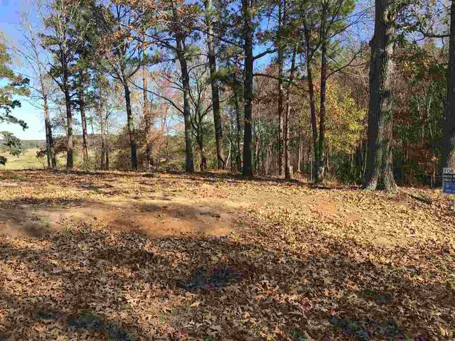 Lot 10 Byrd Circle, Karnack, TX 75661 (MLS #20206014) :: Better Homes and Gardens Real Estate Infinity