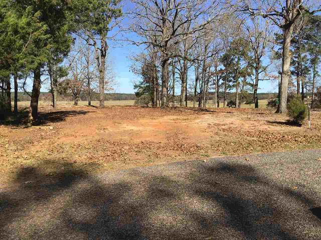 Lot 9 Byrd Circle, Karnack, TX 75661 (MLS #20206018) :: Better Homes and Gardens Real Estate Infinity